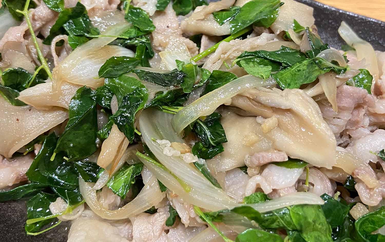 モリンガ生葉の美味しい食べ方【炒め物】